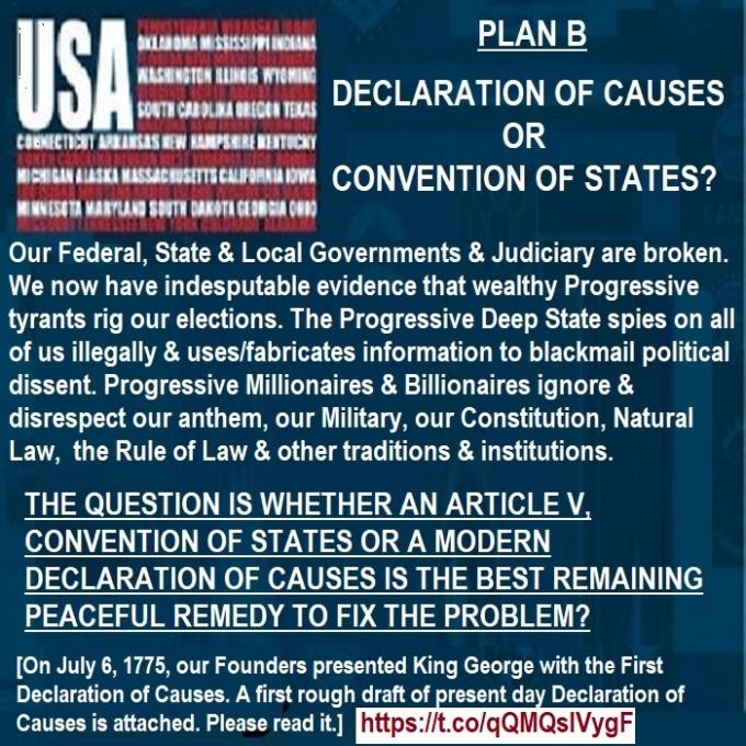 GovernmentisBrokenDeclarationDOCorCOS02042018